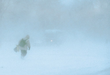 blizzard conditions with falling snow and blowing snow