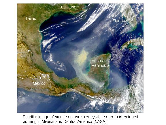 satellite image of aerosols from wildfires