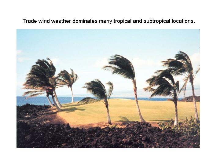 trade wind weather dominates many tropical and subtropical locations(NOAA)